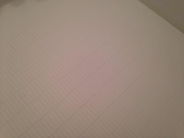カラリ床清掃後2