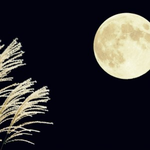 中秋の名月とは縁起が悪いのか?十五夜 十三夜 十日夜お月見三夜で幸運を!