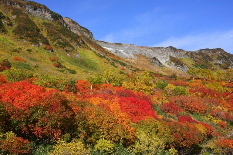 北海道の紅葉 見頃時期はいつ?大雪山・層雲峡・知床