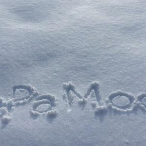 札幌で雪遊びが楽しめる公園やイベント9選!チューブそりが大人気!!