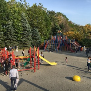 百合が原公園は遊具広場がリニューアル!コンビネーション遊具が3基!ターザンロープも!
