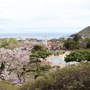 函館公園で桜と動物園を楽しんできた!屋台と花見電飾の期間はBBQもできるぞ!