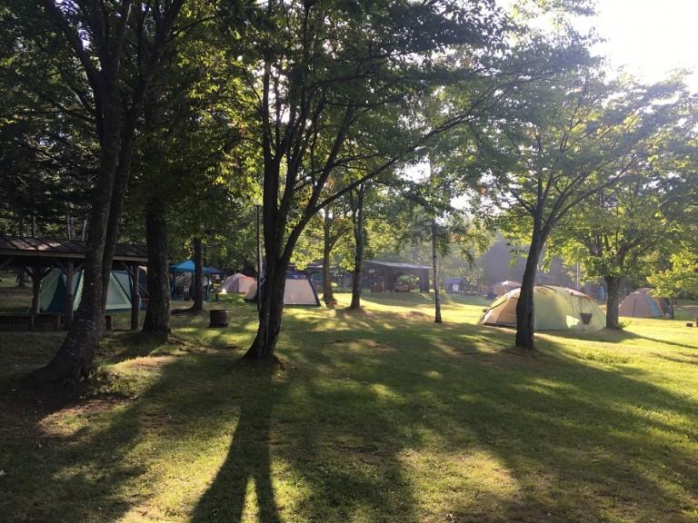 とうまスポーツランドキャンプ場でフィールドアスレチックと虫捕りを楽しんだよ!