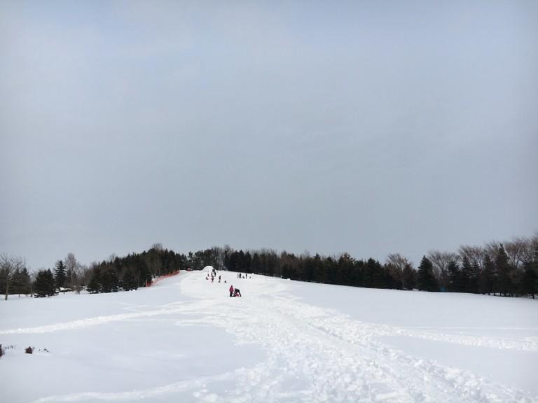 冬の川下公園で雪遊び。はじめてのスキー練習に最適!スノーラフティング体験も